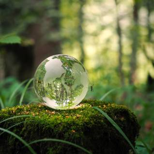 protection-environnement-globe